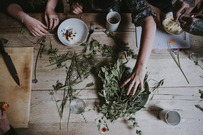 Tips For Beginners on how to start growing herbs indoors
